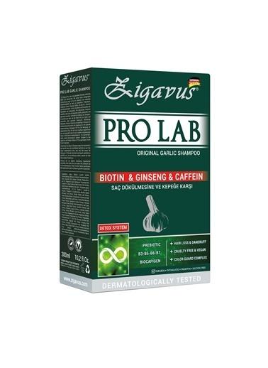 Zigavus Zigavus Pro Lab Garlic Şampuan 300 ml Renksiz